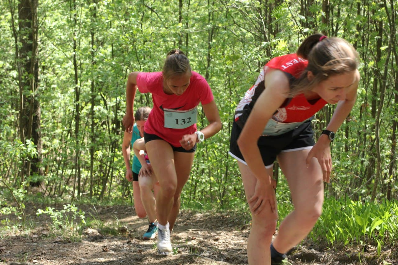 Open championship of St. Petersburg in mountain running photo